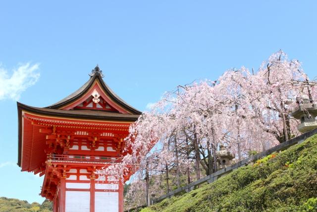 清水寺桜の季節